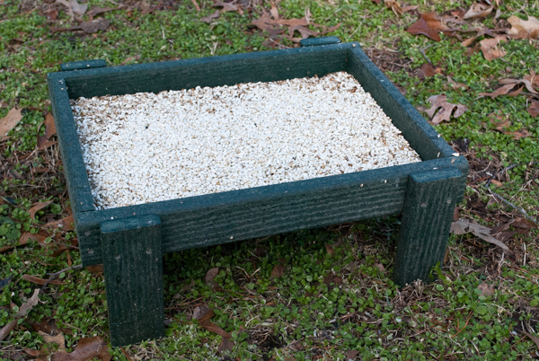 Backyard Boys Ground Platform Feeder
