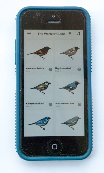 Warbler Guide App Browse Screen