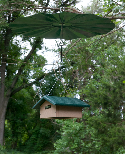 Birds Choice Upside Down Suet Feeder with Erva Baffle