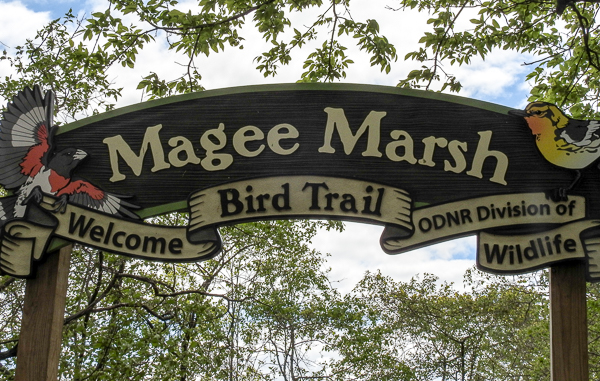 Magee Marsh East Entrance Sign