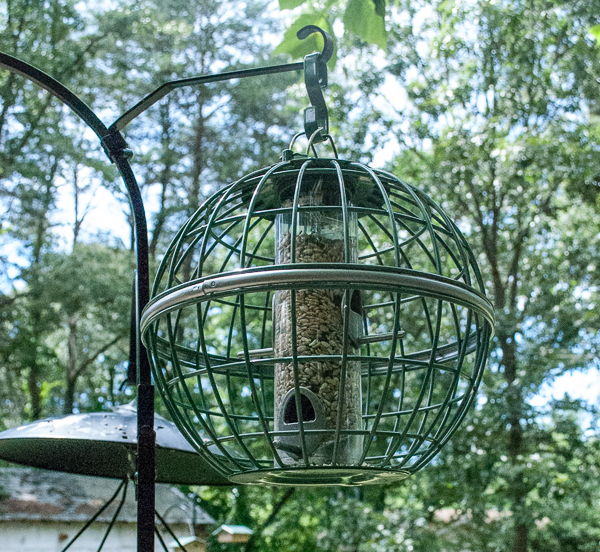 The Nuttery Globe Seed Feeder
