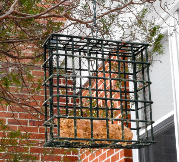 One third of a Block (Slightly Nibbled) of Suet in a Suet Cage Feeder