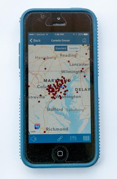 BirdsEye App Map Screen