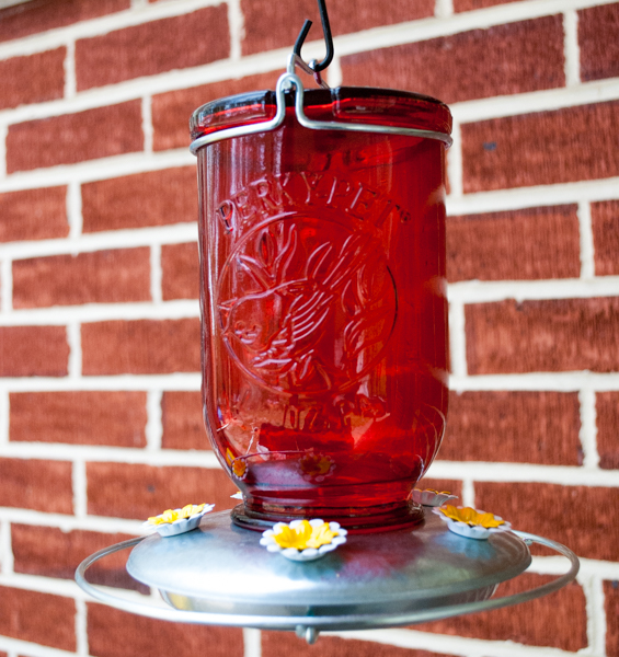 Perky Pet Mason Jar Hummingbird Feeder