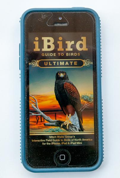 iBird Ultimate birding app Splash Screen