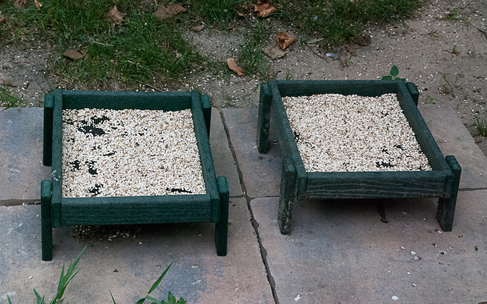 Backyard Boys Ground Platform Feeders
