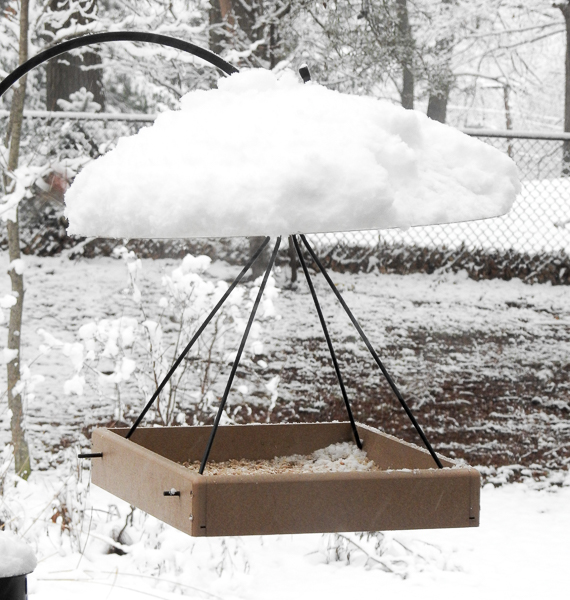 Weather Domes Can Keep Some Rain and Snow Out of Feeders