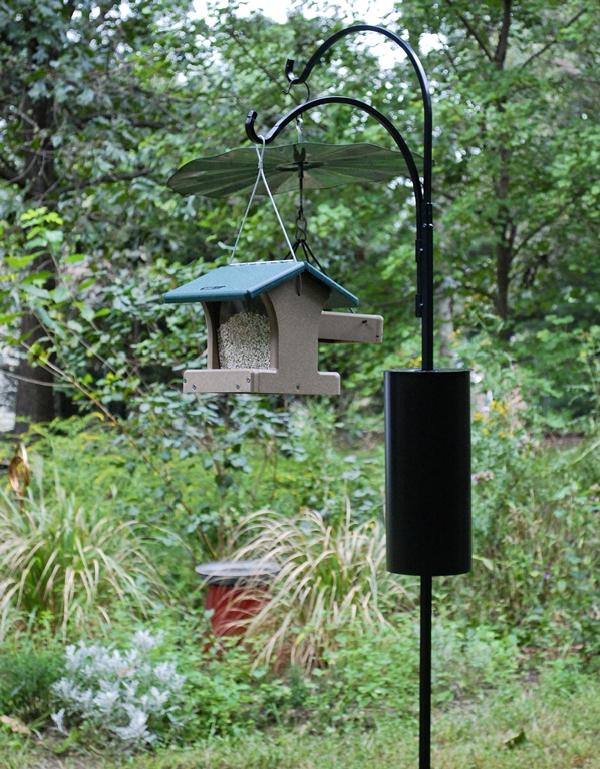 Small Hopper Style Feeder on Shepherd's Hook Pole