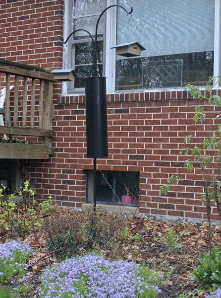 Suet Feeders on Pole Near Front Window