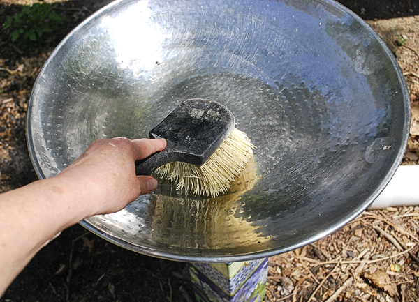 Cleaning the Bowl with a Birdbath Brush