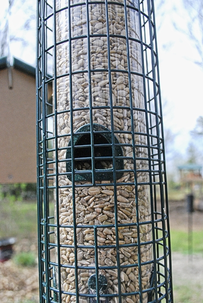 Squirrel Buster Classic with seed Port Closed