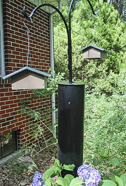 Erva Dual Shepherd's Hook Pole with Raccoon Baflle and two Birds Choice Upside-Down Suet Feeders
