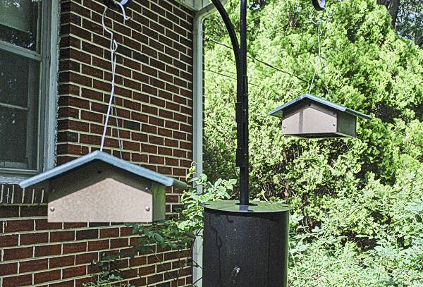These Suet Feeders Hang Lower and Closer to the Baffle
