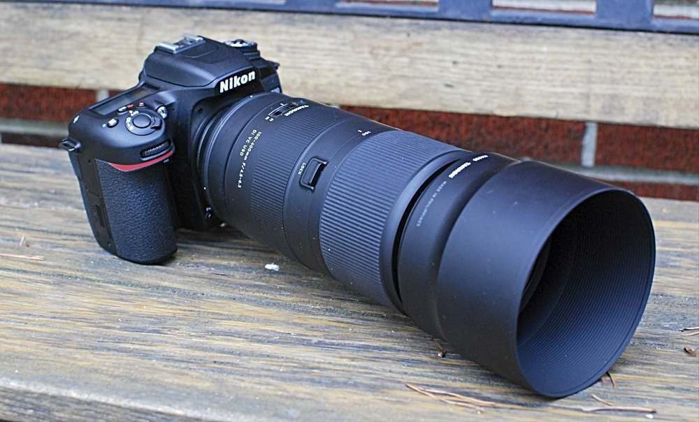 Nikon D7500 with Tamron 100-400 Lens Zoomed In (with Hood)