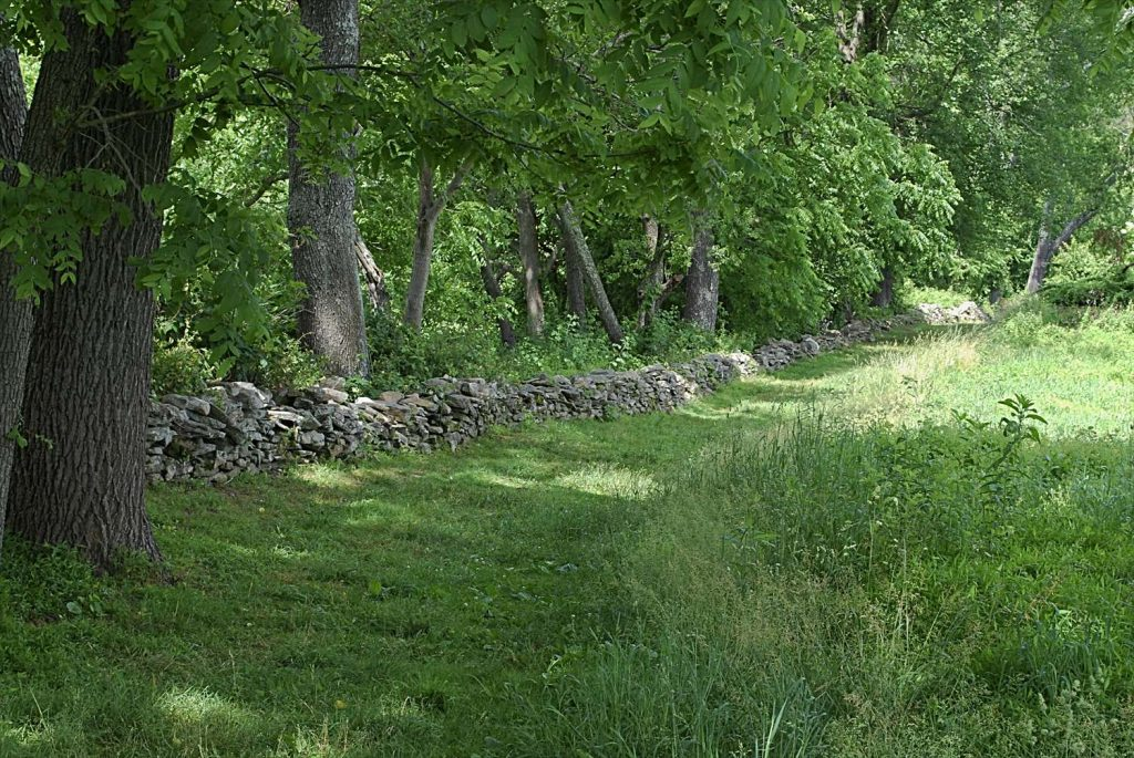 Path at Howard County Conservancy in Maryland