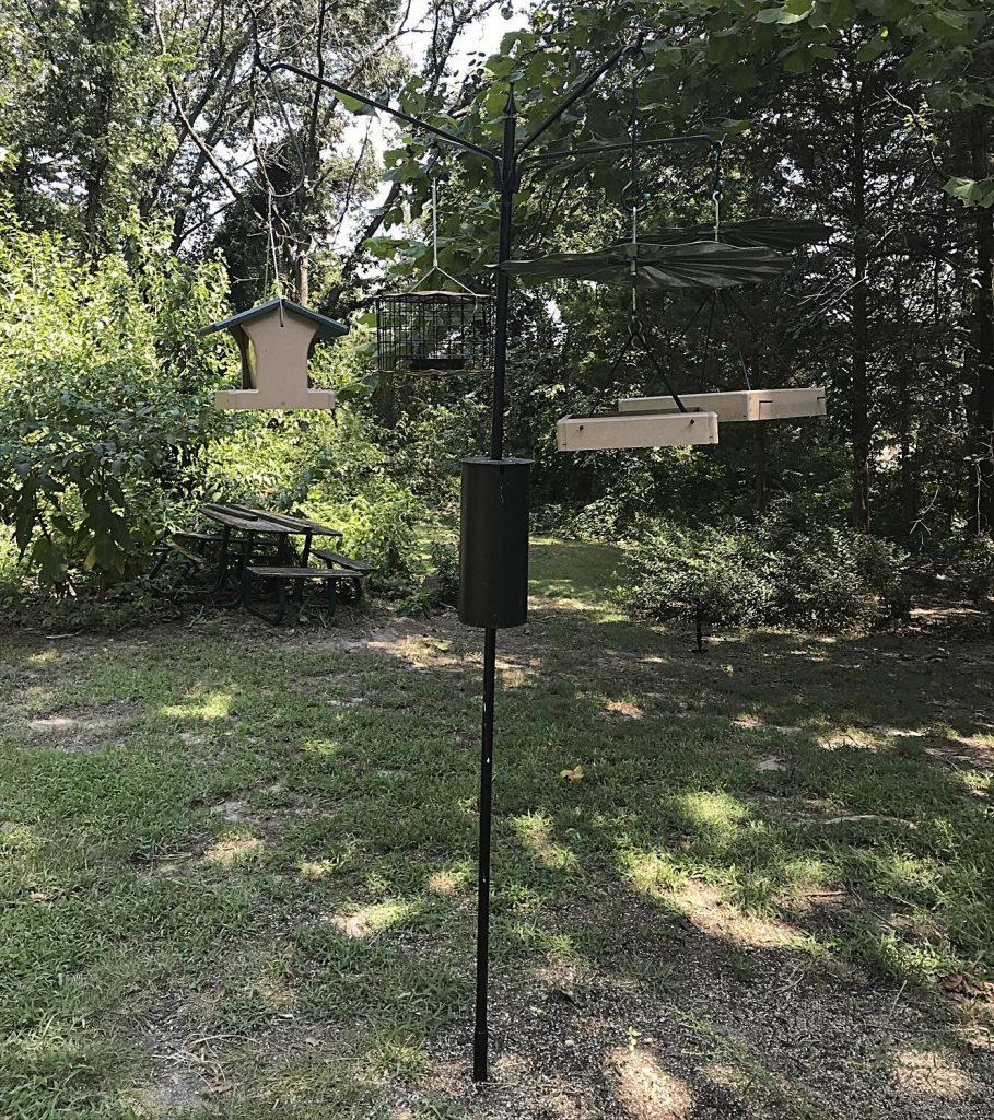 Bird Feeders on a Baffled Pole