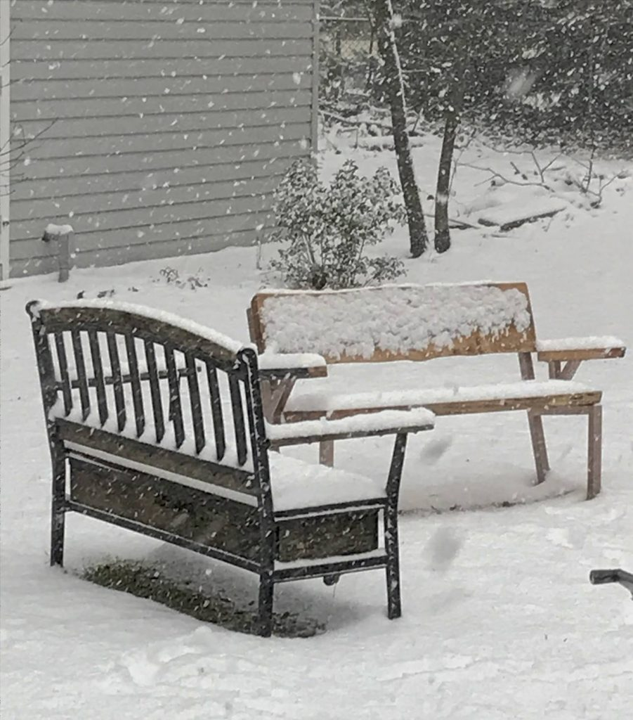 Seed Spread Under Garden Benches lets Ground-Feeding Birds like sparrows eat in the snow