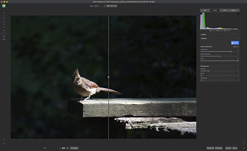 (Editing a Photo of a Young Northern Cardinal in NoNoise)