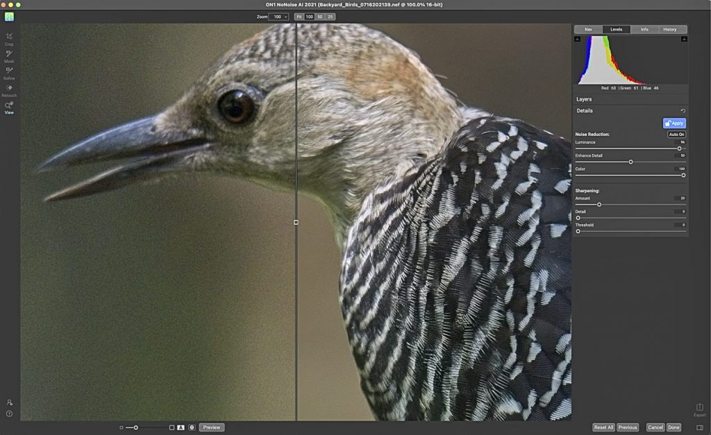 (Editing a Juvenile Red-Bellied Woodpecker Photo in NoNoise)